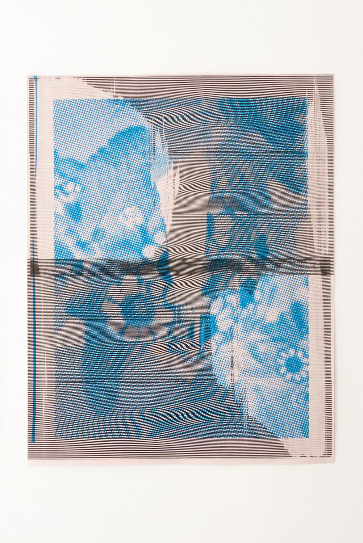 bluet flower — Charlotte Houette, Artiste